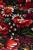 Rosegarden-Black